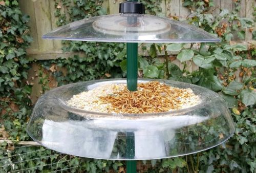 Squirrel Baffle tray and Rain guard special offer
