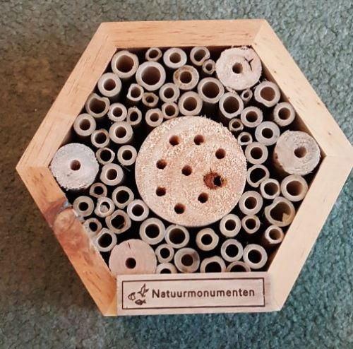 Hexagon Insect house