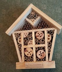 Small Insect House
