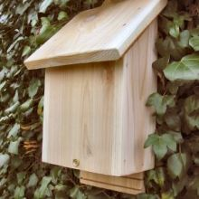 Wooden Bat Nesting Box