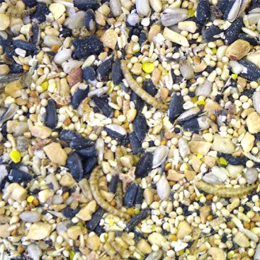 Gardman Blue Tit seed, with insects. 1.8Kg