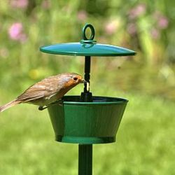 Mini Suet and mealworm feeder