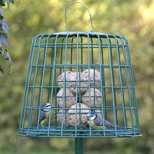 Fatball/Suet cake guardian feeder