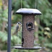Heavy duty seed feeder