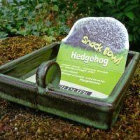 Hedgehog snack bowl PLUS food PLUS guide