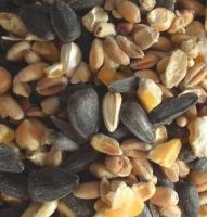ECONOMY MIXED SEED 20Kg