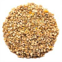 CJ Hi-Energy No Mess Seed Per Kg