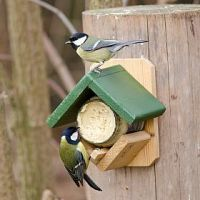 Peanut butter feeder & Jar offer