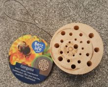 small round insect house