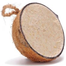 Fat Filled Coconuts Pack of 10(Suet to go)