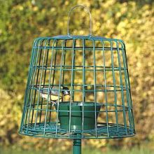 Suet or Mealworm guardian feeder